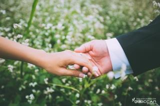 Ảnh cưới Đà lạt ( ivy le )
